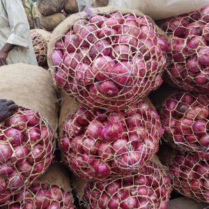 Onions 1 bag