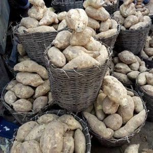 Sweet potatoes - Small Basket