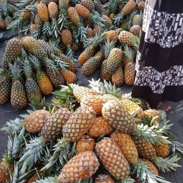 Pineapple 12pcs