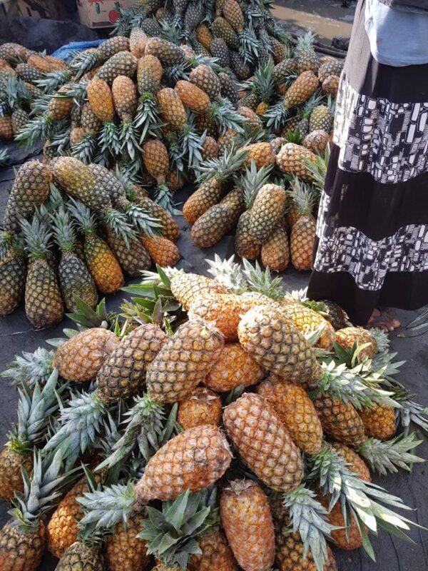 Pineapple 12pcs
